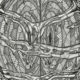 3452_conscious_cluster